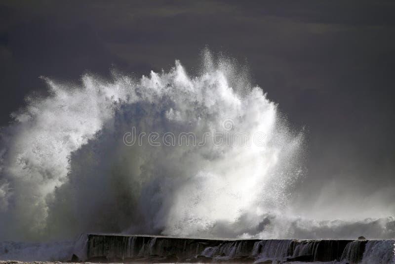tsunami zdjęcie royalty free