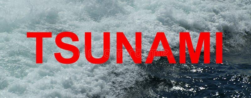 Tsunami, maremoto, onda sísmica do mar, imagens de stock