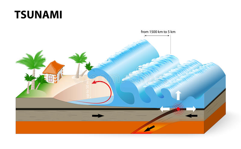 A tsunami is a series of huge waves. It washes against the coast several times with great speed and force. Tsunamis generated by submarine earthquakes travel stock illustration