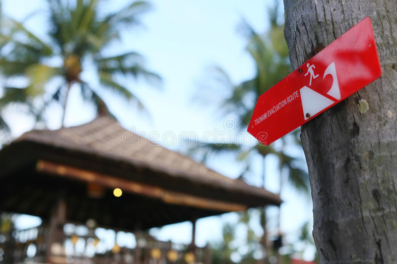 tsunami warning sign on the palm in indonesia stock image