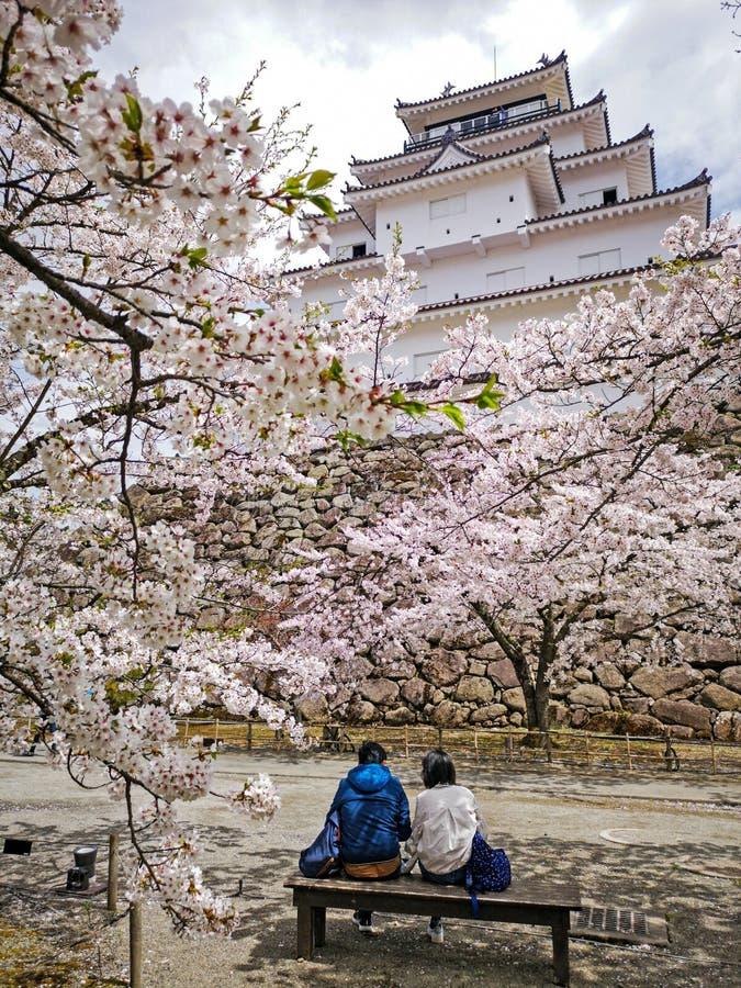 Tsuruga-Schloss oder Aizuwakamatsu-Schloss mit Kirschblüte-Bäumen, Otemac lizenzfreies stockfoto