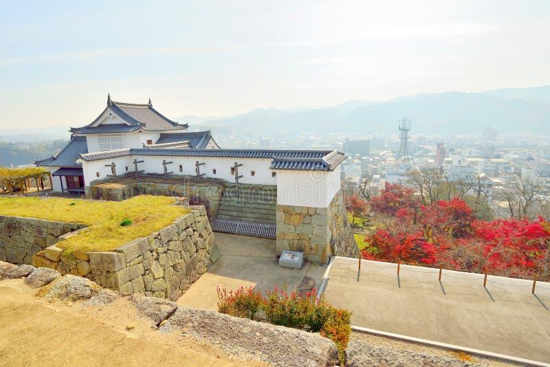 Tsuyama slottsikt och röda höstsidor arkivbild