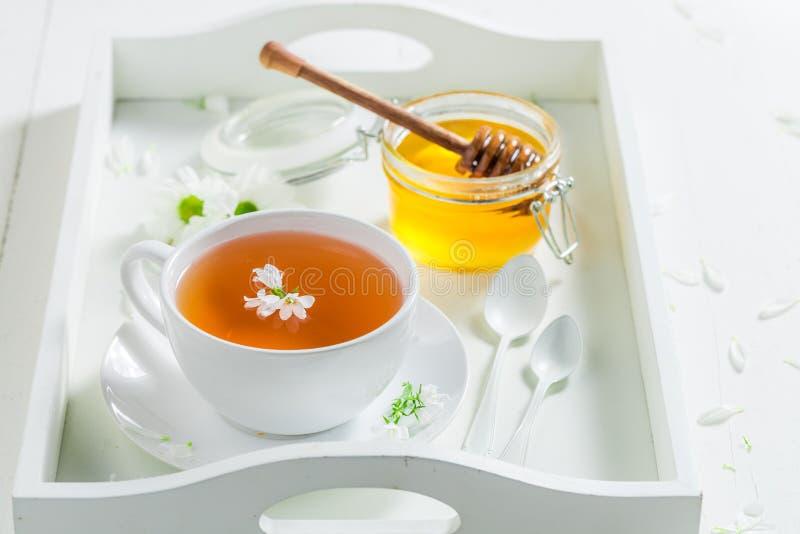 Ttea avec du miel avec le ressort fleurit sur le fond blanc images stock