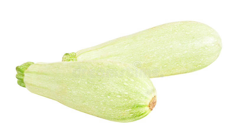 Tuétano vegetal imagen de archivo