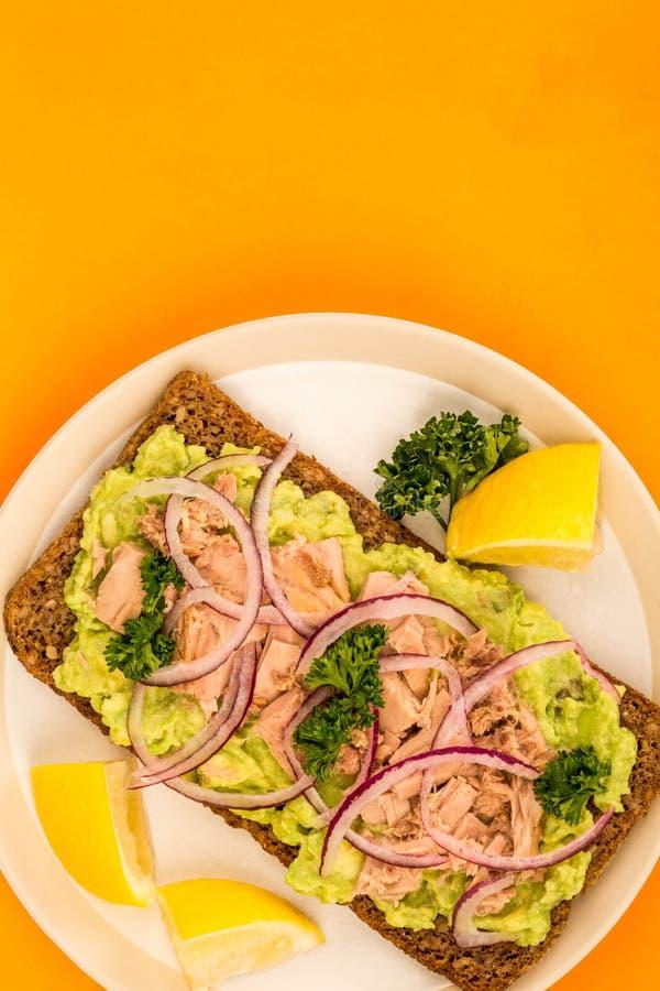 Tuńczyk ryba i Avocado Z cebulami na żyto chleba Otwartej twarzy Sandwic zdjęcia royalty free
