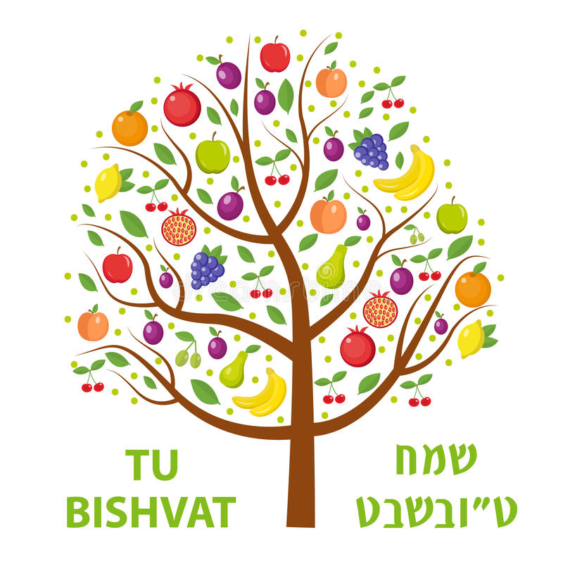 Tu Bishvat greeting card, poster. Jewish holiday, new year of trees. Tree with different fruits, fruit . Vector royalty free illustration