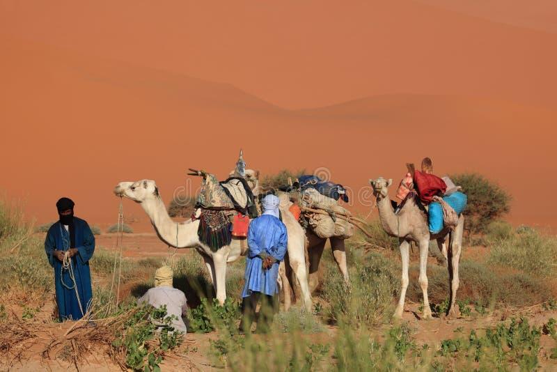 Tuareg nel Sahara fotografia stock