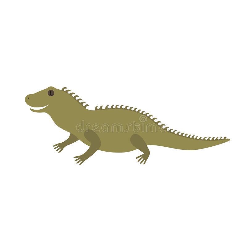 Tuatara of New Zealand. Illustration for children isolated on white background vector illustration