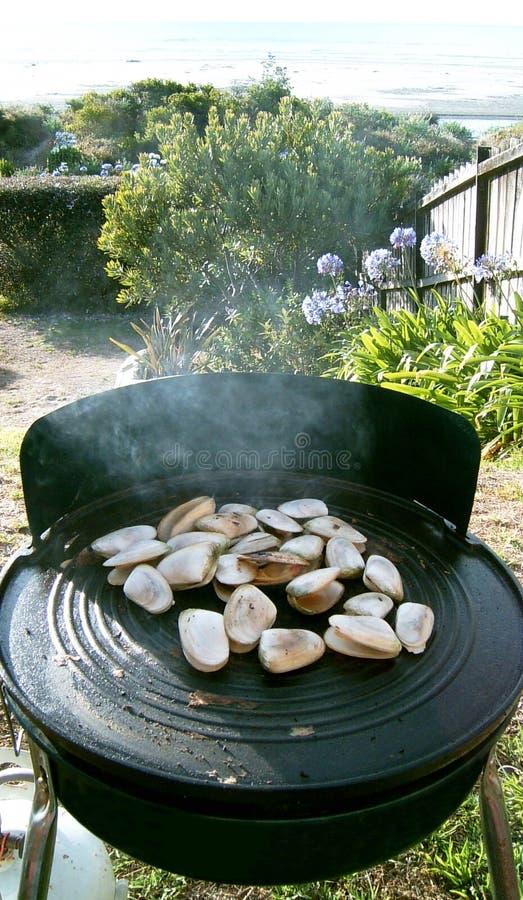 Tuatuas op kiwibbq Ahipara NZ royalty-vrije stock afbeeldingen