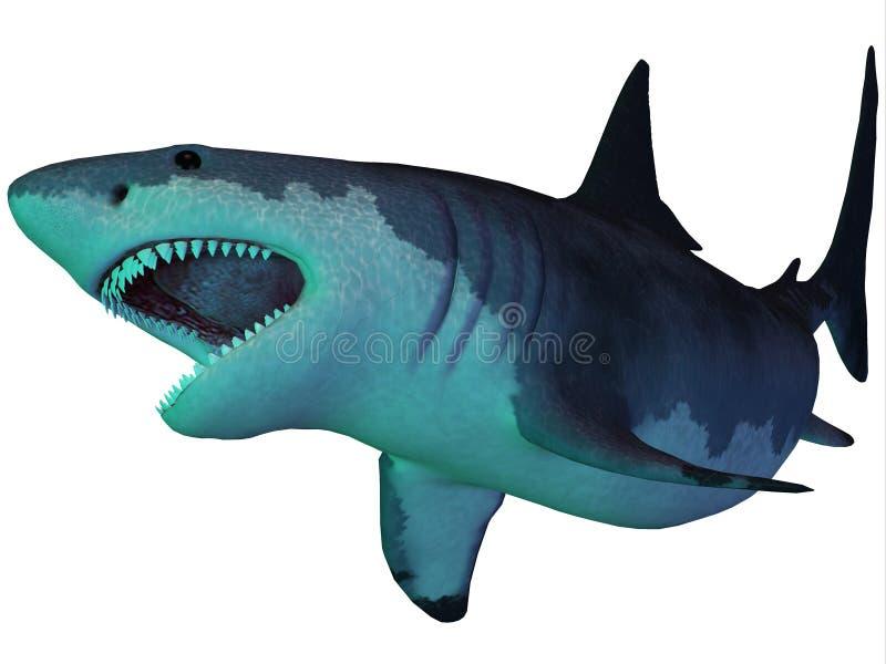 Tubarão de Megalodon subaquático ilustração stock
