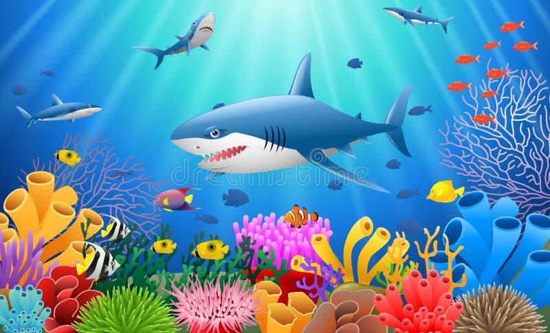 Tubarão dos desenhos animados com coral ilustração do vetor