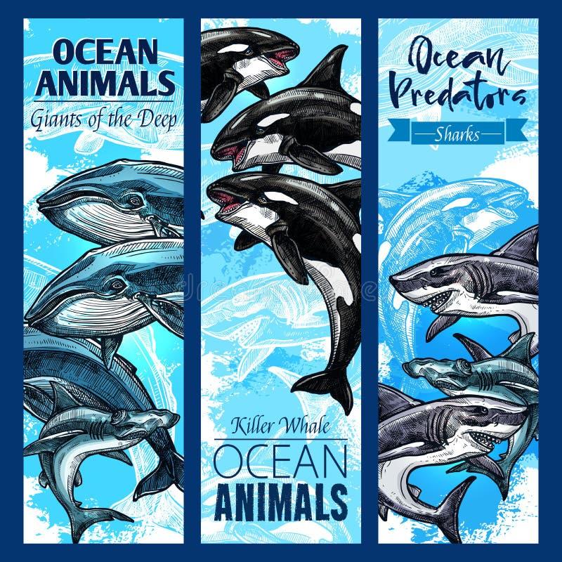 Tubarão e baleia, grupo da bandeira do animal predatório do mar ilustração do vetor
