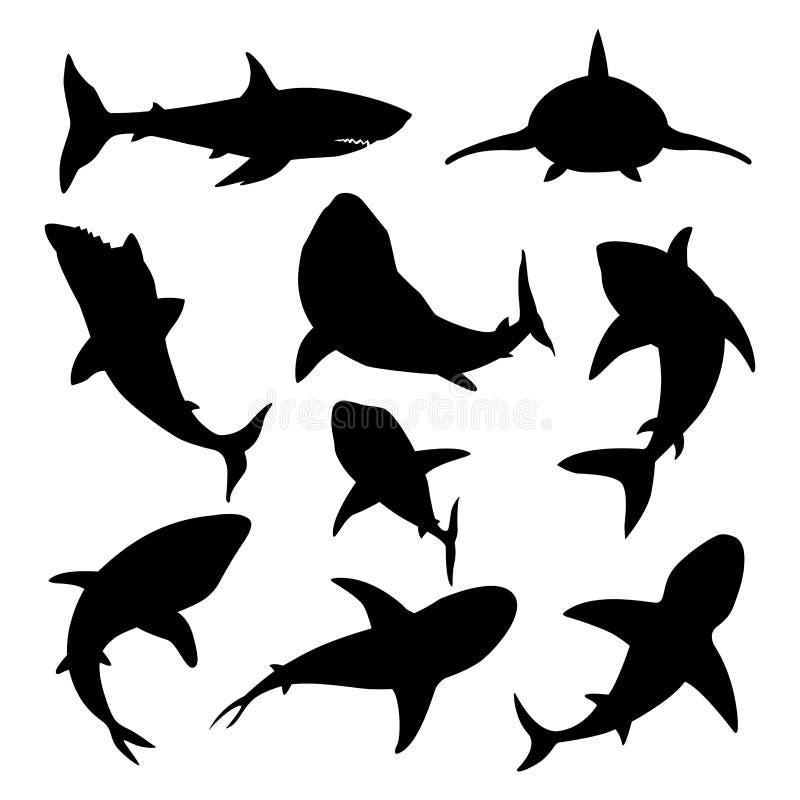 Tubarão irritado da natação toothy da ilustração do vetor ilustração do vetor