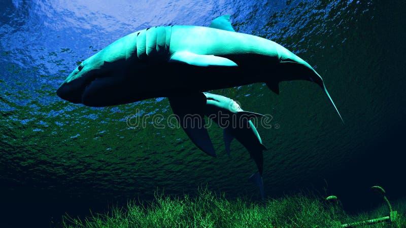 Tubarões no recife ilustração royalty free