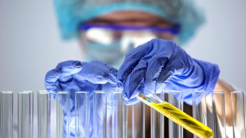 Tube ? essai femelle de participation de chimiste avec l'int?rieur de papier tournesol, exp?rience de laboratoire photo libre de droits