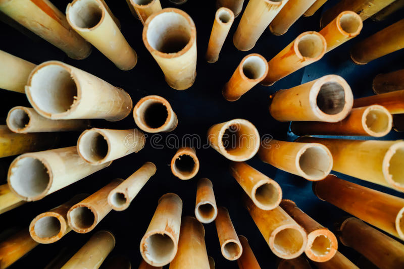 tube d'ฺBamboo photographie stock
