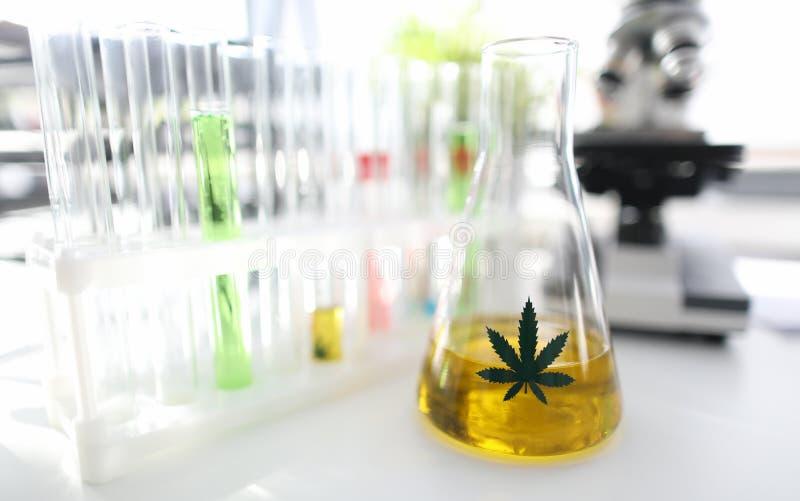 Tube d'essai avec huile de cbd jaune en laboratoire de chimie photo stock