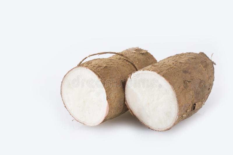 Tubercule cru de manioc - Manihot esculenta photographie stock