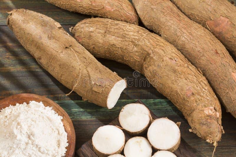 Tubercule cru de manioc - Manihot esculenta photo libre de droits