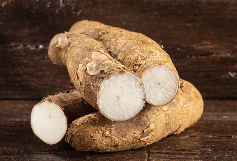 Tubercule cru de manioc - Manihot esculenta L'espace des textes photos stock
