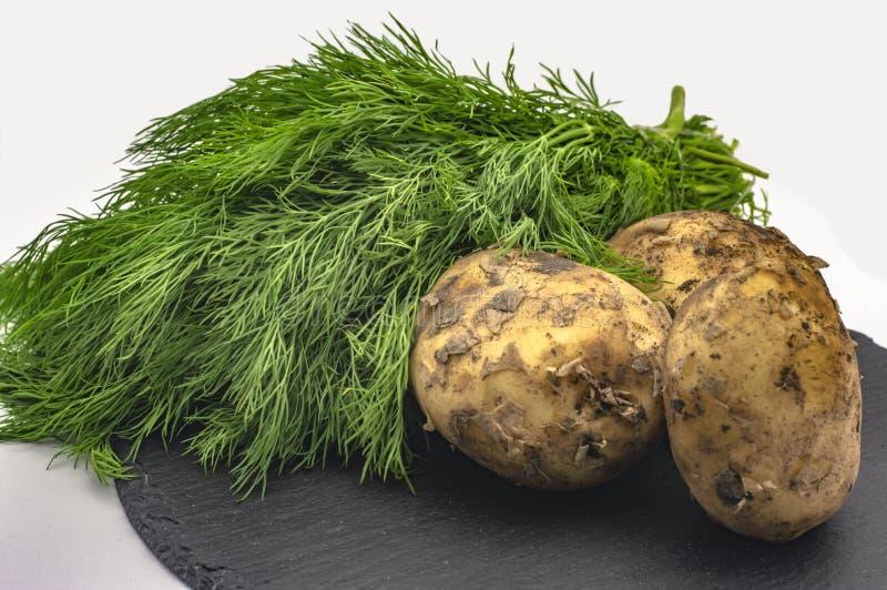 Tuberi delle patate con i verdi del finocchio sulla pietra grigia su un primo piano bianco del fondo immagini stock libere da diritti