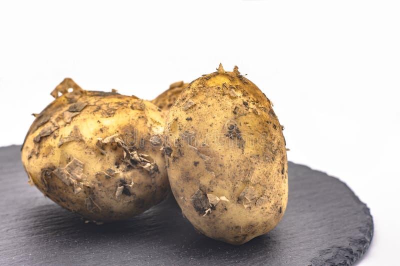 Tuberi delle patate sulla pietra grigia su un primo piano bianco del fondo immagini stock libere da diritti
