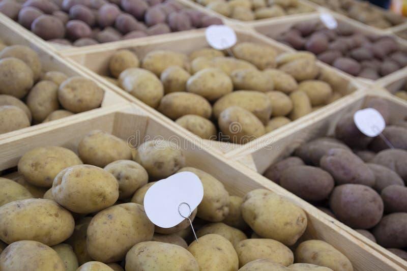 Tuberi selezionati della patata sul contatore del deposito fotografia stock libera da diritti