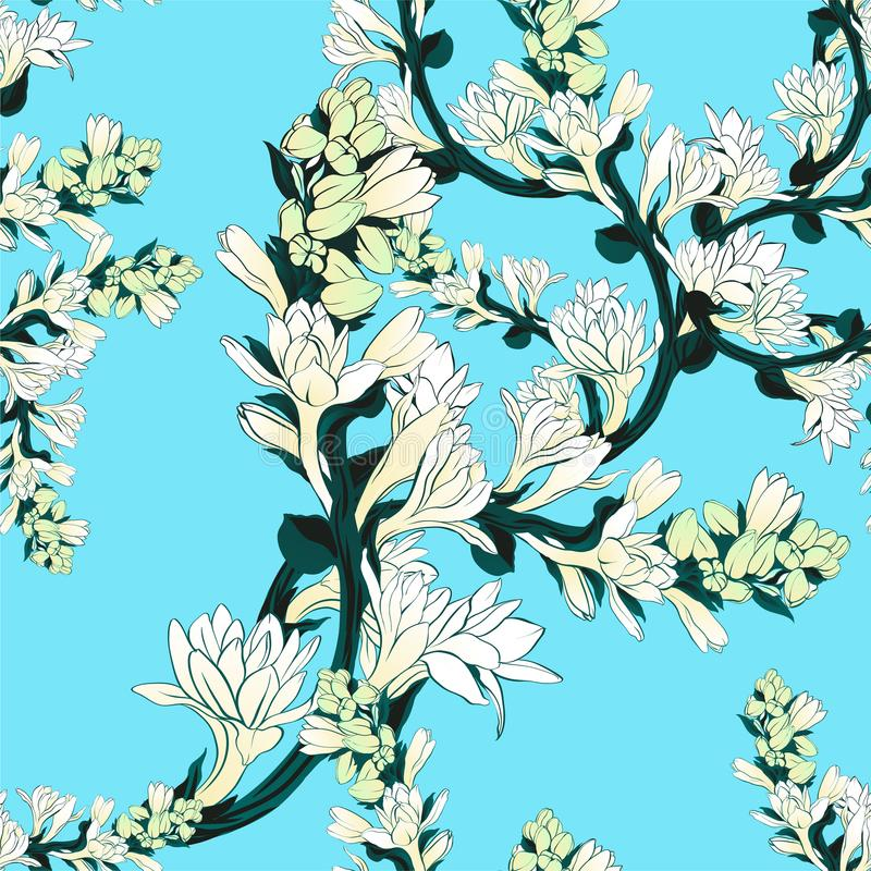 Tuberose - branches. Vector seamless pattern. Medicinal, perfumery and cosmetic plants. Wallpaper. Use printed materials, signs, p. Tuberose - branches royalty free illustration