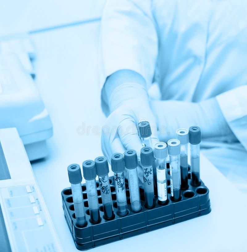 Tubes à essai avec le sang, tonalité bleue image libre de droits