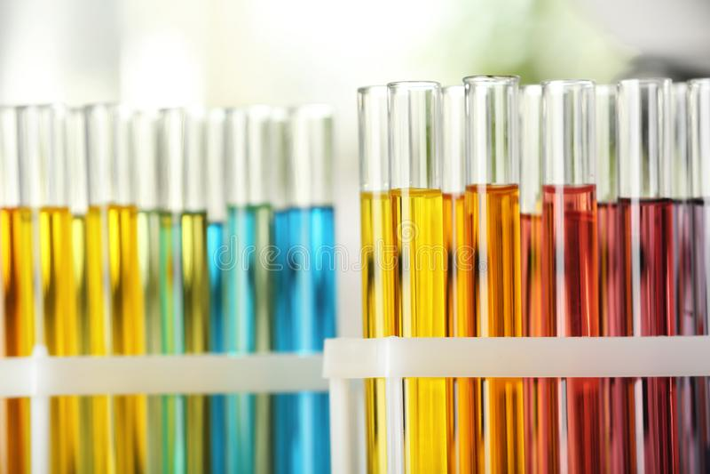Tubes d'essai avec liquides de couleur, vue de fermeture photographie stock libre de droits