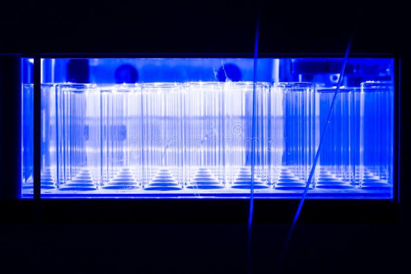 Tubes d'essai en laboratoire image libre de droits