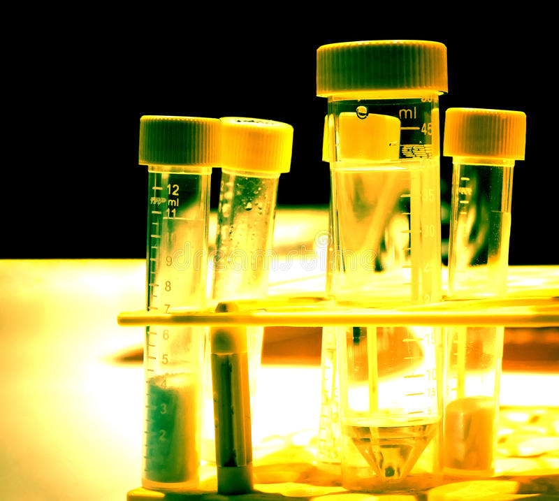 Tubes de laboratoire photographie stock