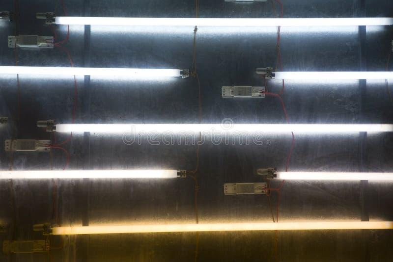 Tubes de lampe au néon images libres de droits