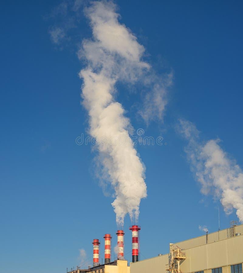 Tubi della pianta con fumo contro cielo blu fotografia stock