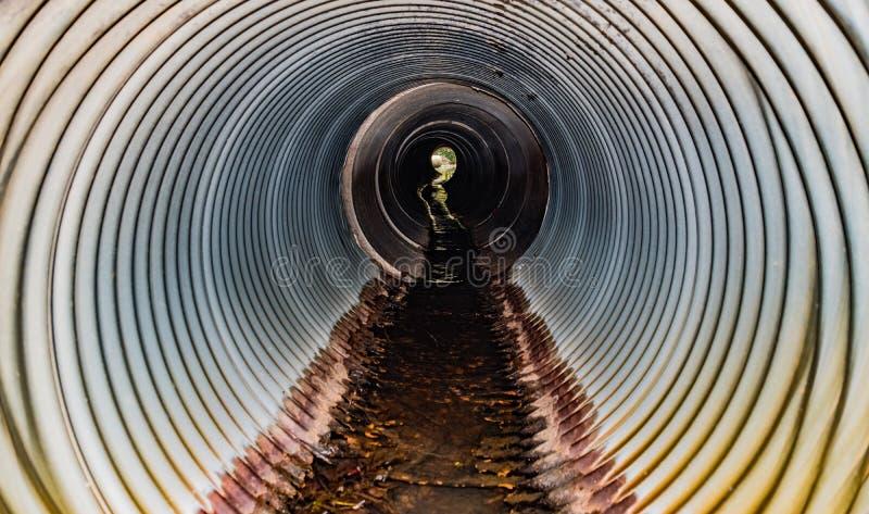 tubo imagen de archivo