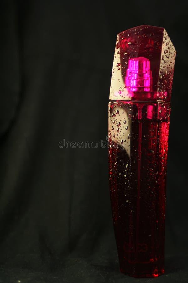 Tubo de ensaio cor-de-rosa do perfume foto de stock