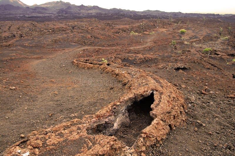 Tubo de lava - Equador imagens de stock