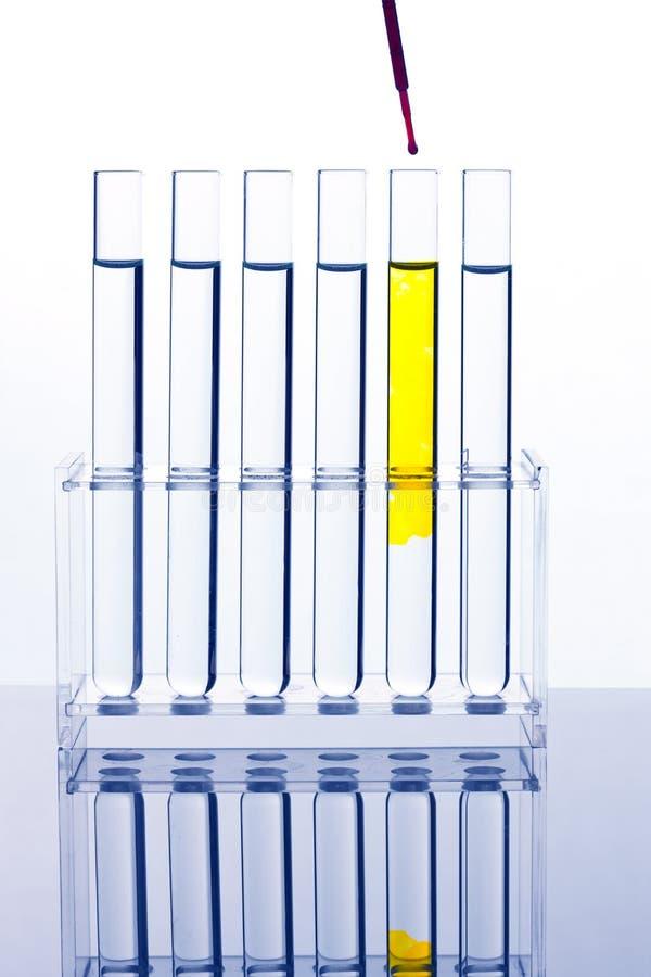 Tubo de prueba para probar en un laboratorio químico fotografía de archivo