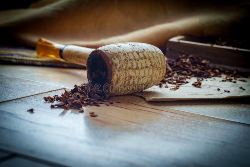 Tubo della pannocchia del tabacco fotografie stock libere da diritti