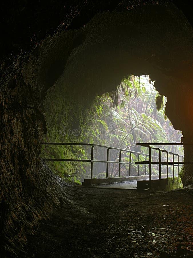 Tubo di lava di Thurston fotografia stock libera da diritti