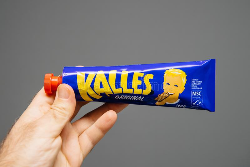 Tubo masculino da terra arrendada da m?o com o caviar de Kalles Origian foto de stock
