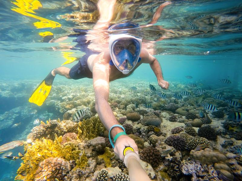 Tubo respirador del hombre en agua poco profunda en los pescados coralinos imagen de archivo