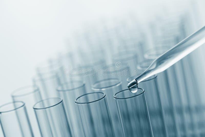 Tubos de análise laboratorial da ciência, equipamento de laboratório para a pesquisa m novo imagens de stock royalty free