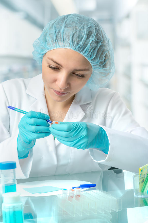 Tubos de ensaio fêmeas novos das etiquetas do cientista ou da tecnologia imagens de stock royalty free