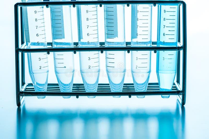 Tubos de ensayo del laboratorio de ciencia en estante fotografía de archivo