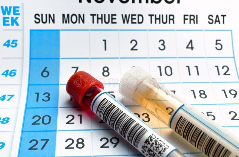Tubos do sangue e amostras de urina para citações da análise e do calendário fotografia de stock royalty free