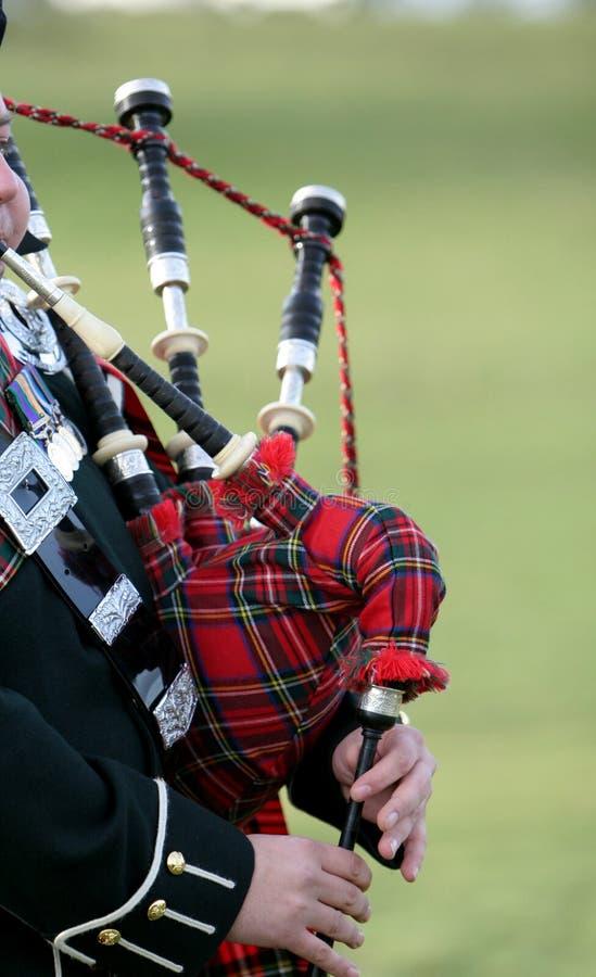 Tubos escoceses del bolso imágenes de archivo libres de regalías