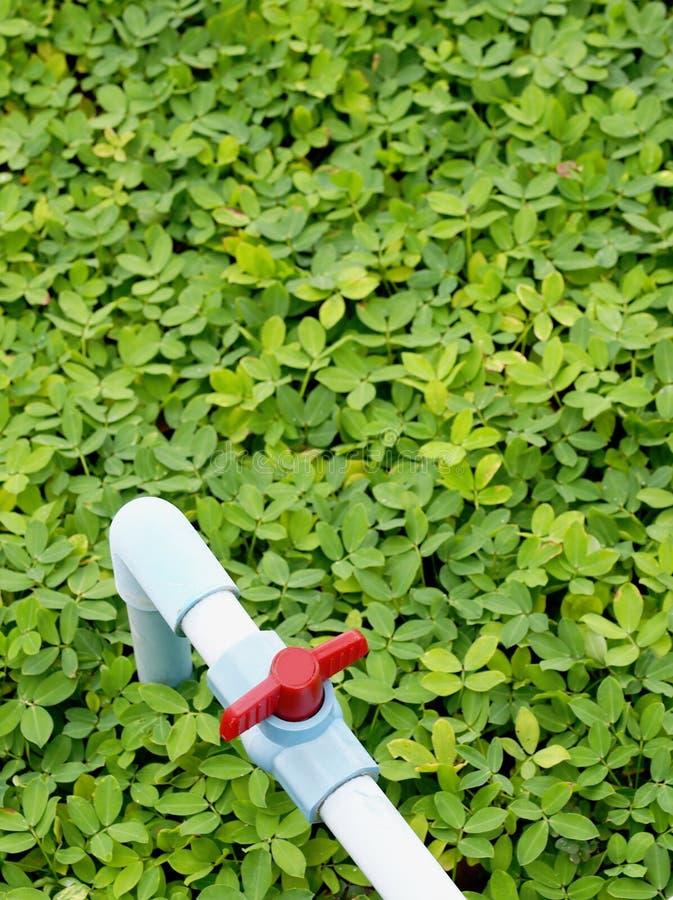 Tubulação azul no campo verde imagens de stock royalty free