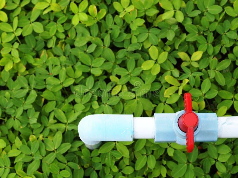 Tubulação azul no campo verde fotos de stock