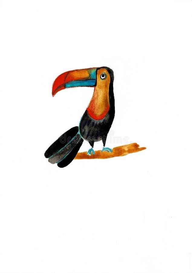 Tucán exhausto de la mano de la acuarela Ejemplo pintado a mano del pájaro Animal tropical aislado en el fondo blanco ilustración del vector